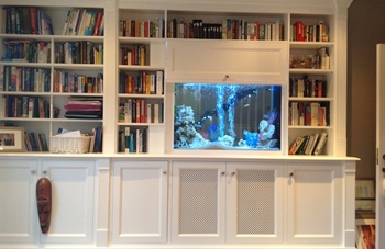 Aquarium Design & Installation (Ireland)